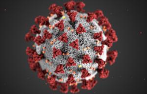 Quels sont les symptômes du coronavirus Covid-19 ?